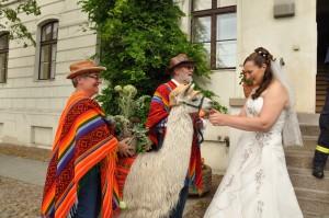 überaschte Braut
